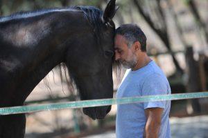 coaching con caballos barcelona 300x200 - Liderazgo