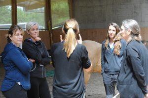 coaching con caballos barcelona 300x200 - Desarrollo profesional
