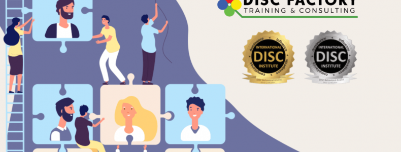 curso disc online