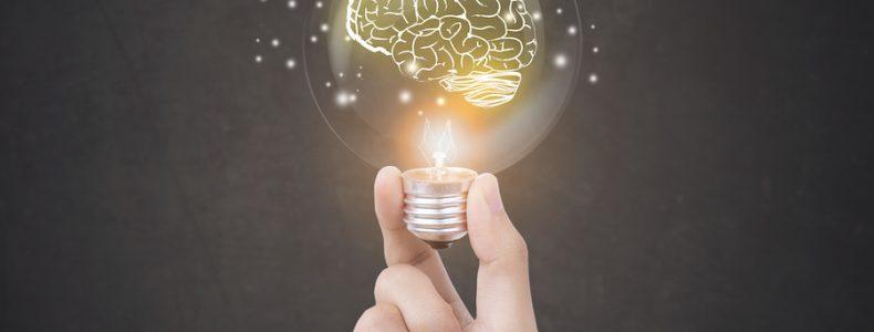 neurociencia educativa international montessori institute